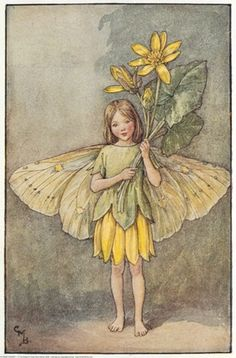 Illustration of the Celandine Fairy from Flower Fairies of the Spring. A girl fairy stand full face holding a bunch of celandines.  										   																										Author / Illustrator  								Cicely Mary Barker