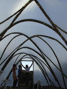 A cheap alternative to a greenhouse - make yourself a hoop house (polytunnel) using bamboo. Do you...