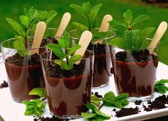 Perfect for all the Spring holidays. Patrick's Day, Eater or April Fool's Day, these Potted Chocolate Mint Pudding desserts will be the hit of the party. These mini mint puddings sprout to life with their Chocolate Pudding, Mint Chocolate, Chocolate Desserts, London Chocolate, Just Desserts, Delicious Desserts, Dessert Recipes, Yummy Food, Cold Desserts