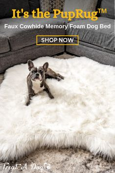 Introducing the PupRug™ Faux Animal Print memory foam dog bed. The world's first memory foam dog bed artfully crafted with a faux fur animal print cover to bring a rich natural touch to your home decor. Cute Baby Animals, Animals And Pets, Funny Animals, Cute Puppies, Cute Dogs, Dogs And Puppies, Doggies, Training Your Dog, Training Collar
