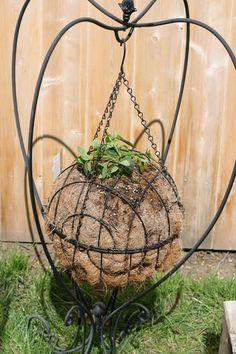 Neat way to use baskets!