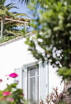 Kavos Hotel near one of the Naxos' best beaches has spacious accommodation, gardens and a large swimming pool: great for relaxed family holidays in Greece. Small Hotels, Greece Hotels, Greece Holiday, Air Bnb, A Boutique, Swimming Pools, Trips, Greek, Beach