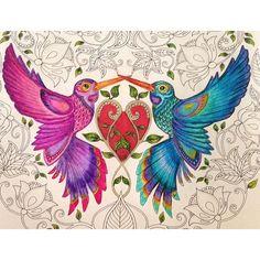 Instagram media anarochabrasilia - + Amor - Blá! #jardimsecreto #coloring #coloringbook #coloringadult #artterapy #fabercastell