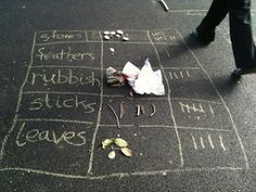 Information or Data Handling Activities Outdoors | Creative STAR Learning | I'm a teacher, get me OUTSIDE here!