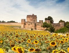 Andalucía, Spain.