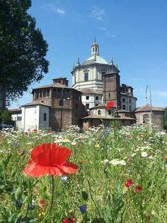 Con Cosimo Buonarota un po' di colore da San Lorenzo #milanodavedere Milano da Vedere