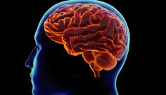Testosterone Levels and Healthy Brain Function - http://www.aaghealth.com/blog/testosterone-therapy-2/testosterone-levels-and-healthy-brain-function