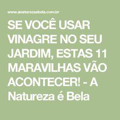 SE VOCÊ USAR VINAGRE NO SEU JARDIM, ESTAS 11 MARAVILHAS VÃO ACONTECER! - A Natureza é Bela