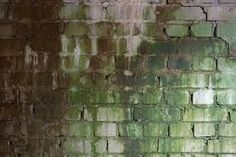 Rusty Brick: Another Great Graffiti backdrop Types Of Bricks, Brick Texture, World Best Photos, Textured Walls, Backdrops, Painting, Collection, Beautiful, Desktop Backgrounds