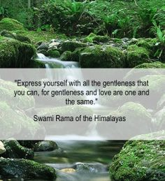 """""""Express yourself with all the gentleness that you can for gentleness and love are one and the same.""""  Swami Rama of the Himalayas  #yogascience #yogaquotes #meditation #americanmeditationinstitute #leonardperlmutter"""