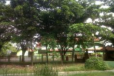 SMPN 8 Kota Cirebon Jalan Raya By Pass, Kota Cirebon, Jawa Barat, Indonesia. photo cp 20 Juli 2014