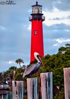 Love Lighthouses. This is Ponce Inlet, FL.  This is within 20 minutes of my house.I will be visiting it soon