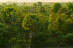 Communities in the Countryside & Beng Mealea Tours