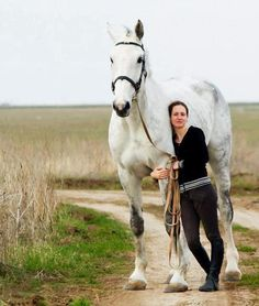 Someday, I'll raise a draft horse for riding.