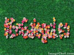 ImageChef - Flores