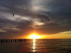 Sunset in Naples fl  Photo taken by Me