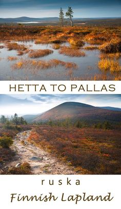 Hetta to Pallas - the best multi-day hike for autumn in Finland. See Lapland in ruska-autumn colours Finland Summer, Finland Travel, Lapland Finland, Beautiful Places To Travel, We Fall In Love, Best Hikes, Day Hike, Summer Travel, Trip Planning