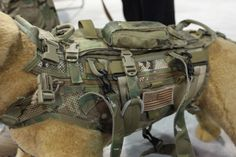 Military Tactical Dog Molle Vest Army Dog Clothes Hunting Police Harness Training Dog Vest with Detachable Pouches Tactical Survival, Survival Gear, Tactical Gear, Survival Skills, Wilderness Survival, Survival Prepping, Oakley Tactical, Tactical Dog Harness, Tactical Training
