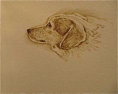 Profile of dog by Luis Vargas Saavedra Pen and ink