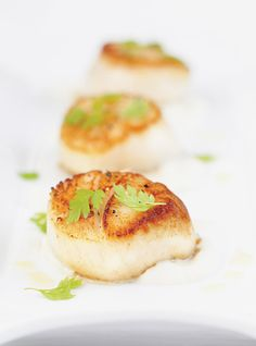 Seared Scallops on Celery Root Purée Recipes Pureed Food Recipes, Healthy Dessert Recipes, Healthy Dinners, Shellfish Recipes, Seafood Recipes, Celery Root Puree, Tapas, Root Recipe, Ricardo Recipe