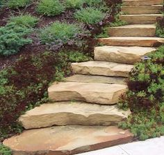 Very neat stone steps >> great for hillsides where the stepping stones just slide down the hill!