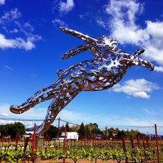 This artful bunny leaps through a winery in #Napa Valley, California. Photo courtesy of jnasa on Instagram.