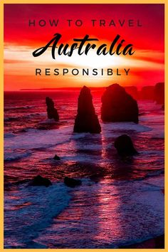 Responsible Travel in Australia: 6 Ethical Animal Activities How to travel Australia responsibly – 6 ethical animal activities including koala hospital, kangaroo sanctuary, ethical shark diving, swimming with whale sharks, and more! Brisbane, Melbourne, Sydney, Perth, Visit Australia, Australia Travel, Australia Visa, South Australia, Western Australia