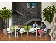 La División de Muebles de Oficina de Bash cuenta con una amplia gama de Sillas, sillones y taburetes ideales para oficinas, educación y espacios colaborativos.