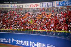 Hiroshima Carp baseball fans in Yokohama, Japan