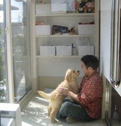 犬と暮らす家|実例紹介|ミサワホーム