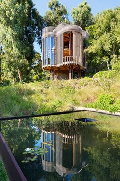 Malan Vorster treehouse 01 850x1275 A Contemporary Tree House Near Cape Town, South Africa