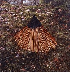 Une sélections des œuvres d'Andy Goldsworthy, un des pionniers du Land Art, photographiées en Grande-Bretagne entre 1983 et 1986. ...Savoir plus
