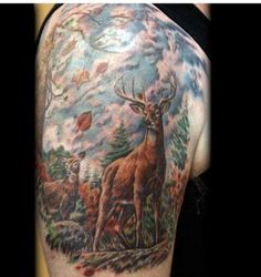 Wildlife Deer Tattoo On Shoulder