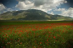 Sibillini national park - null