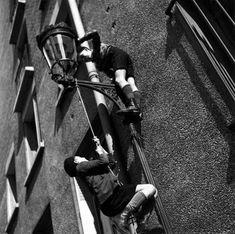 Robert Doisneau                                                       …