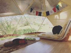 Geodesic Dome Glamping | Hipcamp.com