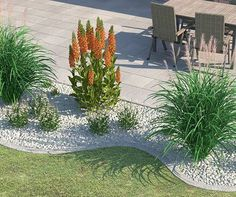Gräser-Beet für sonnige Lichtbedingungen