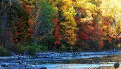 Autumn in Niagara  •Keeley Bourton Photography•