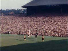 Football Stadiums, Football Fans, Wolverhampton Wanderers Fc, Image Foot, Historical Images, Great Britain, Wolves, Childhood Memories, Terrace