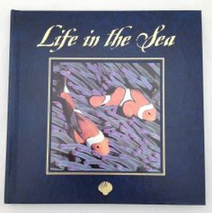 Life in the Sea by Marty Snyderman (1994, Hardcover)