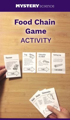 Fun for zoology! Food Chain Activity - free hands-on science activity for and grade elementary kids. Part of a complete unit on Ecosystems: Ecosystems & the Food Chain. Meets Common Core and NGSS. Mystery Science, Science Resources, Science Lessons, Science Education, Science Activities, Life Science, Ecosystem Activities, Food Chain Activities, Physical Science