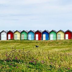 Pretty beach boxes near Blyth on our first day cycling the Coast & Castles from Newcastle to Newbiggin-by-the-sea. Taken on a Sony RX100M3 #blyth #northumberland #uk #backpacking #travel #adventuretravel #beautifuldestinations #sonyimages #coastandcastles
