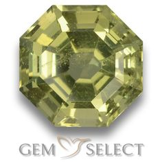 GemSelect features this natural untreated Apatite from Madagascar. This Green Apatite weighs 4.3ct and measures 9.8 x 9.6mm in size. More Asscher Cut Apatite is available on gemselect.com #birthstones #healing #jewelrystone #loosegemstones #buygems #gemstonelover #naturalgemstone #coloredgemstones #gemstones #gem #gems #gemselect #sale #shopping #gemshopping #naturalapatite #apatite #greenapatite #octagongem #octagongems #greengem #green Green Gemstones, Loose Gemstones, Natural Gemstones, Buy Gems, Gem Shop, Asscher Cut, Madagascar, Gemstone Colors, Shades Of Green
