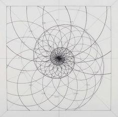 Venezuelan artist Rafael Araujo creates meticulously detailed drawings of the Fibonacci spiral in nature–now, you can color along. Geometric Tattoo Nature, Geometric Drawing, Geometric Art, Sacred Geometry Patterns, Sacred Geometry Tattoo, How To Draw Sacred Geometry, Patterns In Nature, Logarithmic Spiral, Fibonacci Tattoo