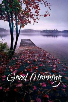 Good morning 🌞 jano I love you so much my love ❤️I miss you already Sathi darling. Good Morning Beautiful Pictures, Good Morning Images Flowers, Good Morning Beautiful Images, Cute Good Morning Quotes, Latest Good Morning Images, Morning Qoutes, Good Morning Photos, Morning Pictures, Inspirational Good Morning Quotes