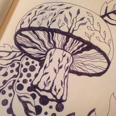 Fungus foraging in my #sketchbook @illustrator_eye