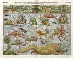 1560, Sebastian Munster.One of the most famous charts of mythical sea monsters. Munster's plate of monsters of both land and sea, taken from Olaus Magnus' Carta Marina of 1539.