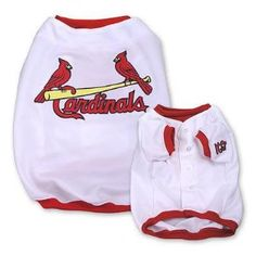 Baseball Jersey - St. Louis Cardinals by Sporty K-9  ♥♥  Available at BuyDogSweaters.com