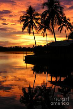✯Tropical Sunset  #Beautiful #Places #Photography