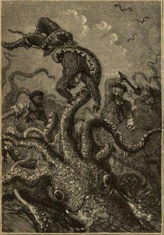 Il mio articolo dedicato al calamaro gigante è online sul sito del Cicap.